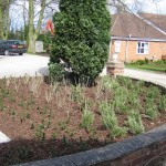 Residential home - SelbyCommercial design & build landscaping project at local nursing home.